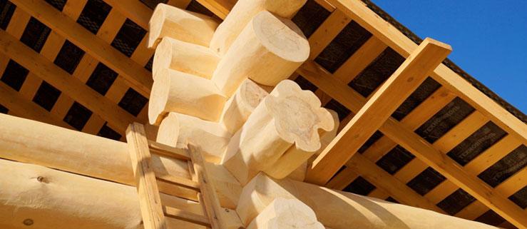 Proč zvolit dům ze dřeva?